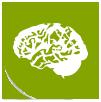 picto-cerveau